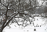 Still falling snow covers the trees and monuments Saturday, December 30, 2017, at East Cemetery in Manchester. .  (Jim Michaud / Journal Inquirer)