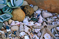 Beachcombing treasures mixed with favourite pebbles, shells and old granite grinding stones are used as a ground covering at the base of the raised pond