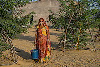Manju Devi, 25, poses for a portrait in her backyard plantation of forest trees behind her house in Rajera village, Bikaner, Rajasthan, India on October 23, 2016. Non-profit organisation Technoserve works with farmer's wives in Bikaner, providing technical support and training for backyard plantations that help these communities cope with the harsh climate of the Thar desert. The forest trees provide shade to the people and their cattle, reduces water loss and sand shifting, raises the value of their properties by improvement of the landscape and raises the pride of their families, ensuring better opportunities for their children. Photograph by Suzanne Lee for Technoserve