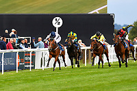 Winner of The Irish Yearling Sales Nursery Stakes Headland ridden by Oisin Murphy and trained by Martyr Meade during the Bathwick Tyres & EBF Race Day at Salisbury Racecourse on 6th September 2018