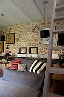 A rustic ladder leads to the upper floor from the middle of the open-plan living area