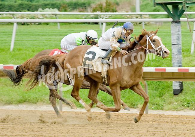 Giant Sensation winning at Delaware Park on 5/21/12
