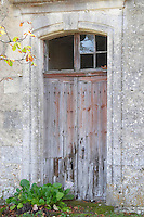 Old door o a shed. Despagne Vineyards and Chateaux, Bordeaux, France