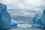 Icebergs. Cape Farewell Youth Expedition 08(©Robert vanWaarden ALL RIGHTS RESERVED)
