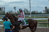 HALLANDALE BEACH, FL  JANUARY 27: #5 Collected, ridden by Mike Smith in the post parade of the Pegasus World Cup Invitational, at Gulfstream Park Race Track on January 27, 2018,  in Hallandale Beach, Florida. (Photo by Casey Phillips/ Eclipse Sportswire/ Getty Images)