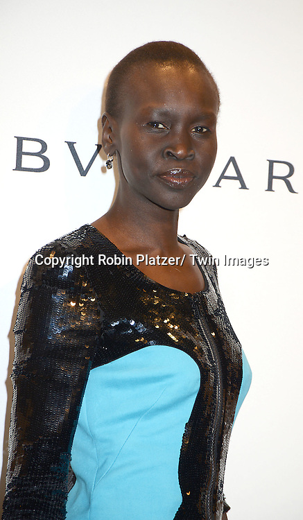 Alek Wek attends the amfAR New York Gala on February 5, 2014 at Cipriani Wall Street in New York City.