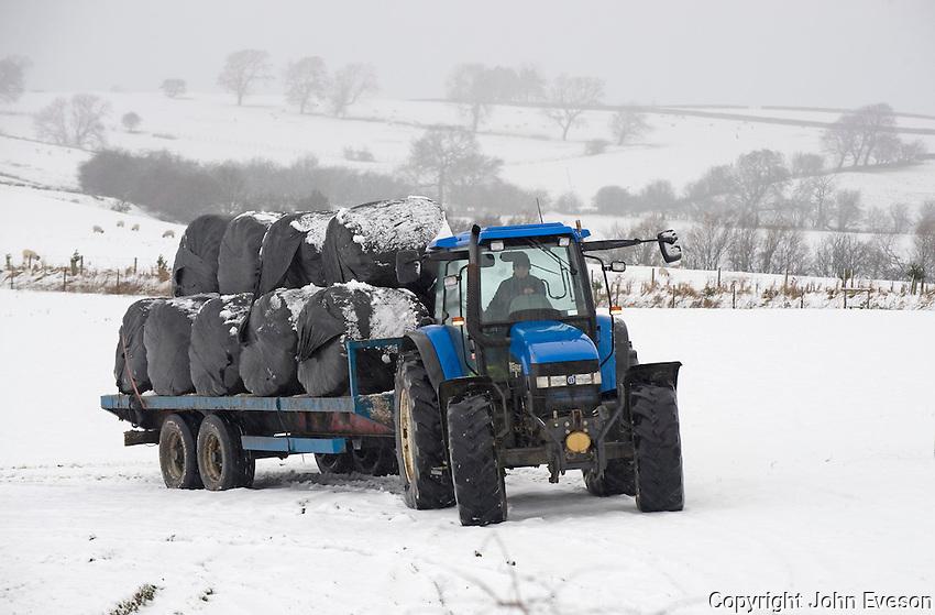 Transoprting big bales of silage in the snow, Slaidburn, Lancashire....Copyright..John Eveson, Dinkling Green Farm, Whitewell, Clitheroe, Lancashire. BB7 3BN.01995 61280. 07973 482705.j.r.eveson@btinternet.com.www.johneveson.com
