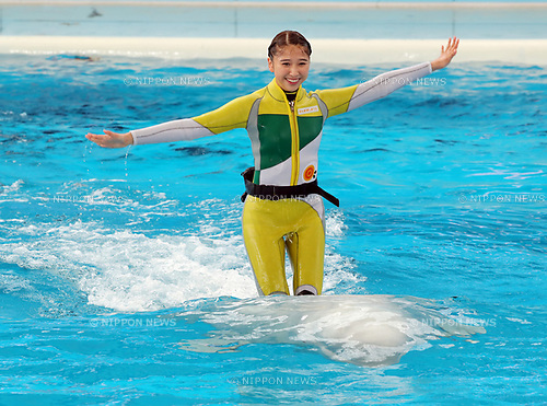 "April 26, 2017, Yokohama, Japan - Shiori Tamai, a member of Japanese girls only pop group ""Momoiro Clover Z"" (MCZ) rides on the back of a white beluga at the aquarium of the Hakkeijima Sea Paradise in Yokohama, suburban Tokyo on Wednesday, April 26, 2017. The aquarium will start the new attraction with sea aninals featuring a MCZ's TV program for children from April 28.   (Photo by Yoshio Tsunoda/AFLO) LwX -ytd-"