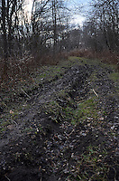 ATV destruction of landscape, at Perch Creek Nature Habitat