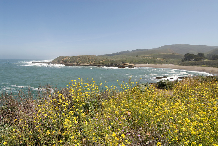 California, San Luis Obispo County: Montana de Oro state park offers scenic coastal views and tide pool exploring..Photo caluis179-71214..Photo copyright Lee Foster, www.fostertravel.com, 510-549-2202, lee@fostertravel.com