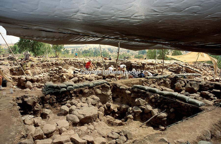 Israel, Sea of Galilee, aecheological excavation at Bethsaida