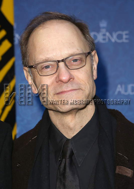 David Hyde Pierce attends the Broadway Opening Night Performance of 'The Audience' at The Gerald Schoendeld Theatre on March 8, 2015 in New York City.