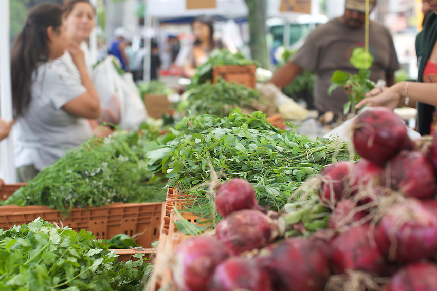 BROOKLYN, NY - July 18, 2015: The Sunset Park Greenmarket, hosted by GrowNYC on 4th Avenue between 59th And 60th Streets.<br /> <br /> Credit: Clay Williams.<br /> <br /> &copy; Clay Williams / http://claywilliamsphoto.com