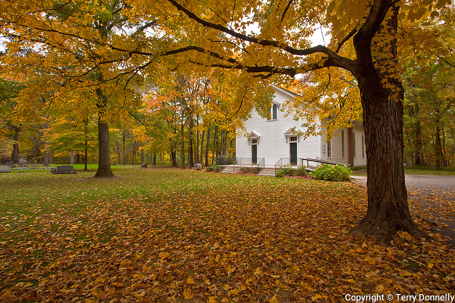 McLean County, IL<br /> Historic Funks Grove Church framed by a maple tree in fall color
