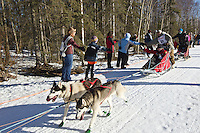 Lev Shvarts and team run past spectators on the bike/ski trail during the Anchorage ceremonial start during the 2014 Iditarod race.<br /> Photo by Britt Coon/IditarodPhotos.com