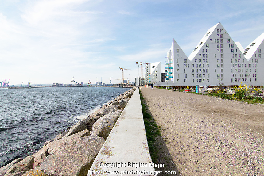 Aarhus Ø, Denmark, with part of the new housing and a view to the harbor