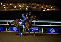 10-29-17 Breeders Cup Morning Workouts