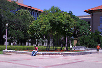 A beautiful summer day as a student studies for class at the campus mall