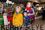 Owen, Ben and Ava Sheehy enjoying the Dingle Christmas Craft Fair at the Skellig Hotel on Sunday.