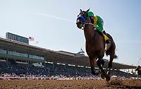ARCADIA, CA - MARCH 11: Mastery #4, ridden by Mike Smith wins the San Felipe Stakes at Santa Anita Park before being banned off with an injury, on March 11, 2017 in Arcadia, California. (Photo by Alex Evers/Eclipse Sportswire/Getty Images)