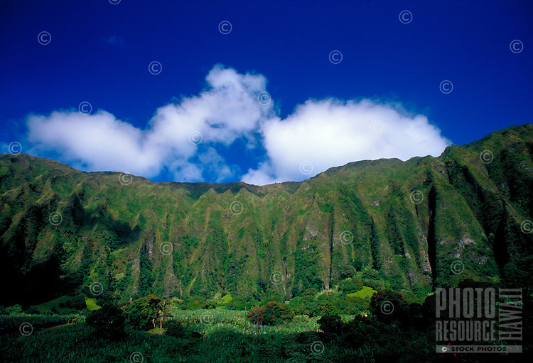 Koolau mountain range , Oahu