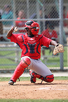 March 18, 2010:  Catcher Michael Thomas of the Boston Red Sox organization during Spring Training at Ft.  Myers Training Complex in Fort Myers, FL.  Photo By Mike Janes/Four Seam Images