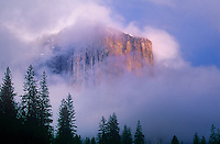 762609331 el capitan the massive granite monolith in yosemite valley sits shrouded in low lying clouds during a clearing storm in yosemite national park california