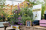 Bee and pollinator friendly plant sales stand in Wisley Plant Centre.