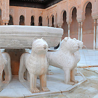 Fountain in the Court of the Lions, built 1362 in the second reign of Muhammad V, in the Nasrid dynasty Palace of the Lions, Alhambra Palace, Granada, Andalusia, Southern Spain. The fountain consists of an alabaster basin supported by 12 statues of lions in white marble, carved in the 11th century. The Alhambra was begun in the 11th century as a castle, and in the 13th and 14th centuries served as the royal palace of the Nasrid sultans. The huge complex contains the Alcazaba, Nasrid palaces, gardens and Generalife. Granada was listed as a UNESCO World Heritage Site in 1984. Picture by Manuel Cohen