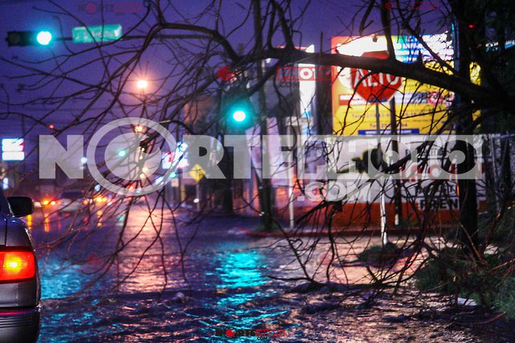 Sobre en bulevar Reroma y Jose S. Hely  un arbol cuelga de los cables de teléfonos