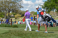 Tyrrell Hatton (ENG) heads down 7 during round 4 of the Arnold Palmer Invitational at Bay Hill Golf Club, Bay Hill, Florida. 3/10/2019.<br /> Picture: Golffile | Ken Murray<br /> <br /> <br /> All photo usage must carry mandatory copyright credit (© Golffile | Ken Murray)