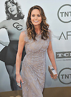 Diane Lane at the 2014 American Film Institute's Life Achievement Awards honoring Jane Fonda, at the Dolby Theatre, Hollywood.<br /> June 5, 2014  Los Angeles, CA<br /> Picture: Paul Smith / Featureflash