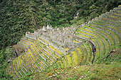Winay Wayna, Inca Trail, Peru. Ruined buildings set on a steep mountainside with even stone built terraces for food production below and above.