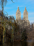 Overhanging branches on central park lake. Images of New York 2004, New York,U.S.A