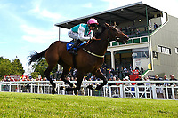 Winner of The Smith & Williamson Fillies' Novice Stakes (Class 5) Sun Maiden ridden by Pat Dobbs and trained by Sir Michael Stoute during Afternoon Racing at Salisbury Racecourse on 17th May 2018