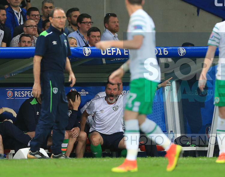 Roy Keane Republic of Ireland Assistant coach bellows from the dugout during the UEFA European Championship 2016 match at the Stade Pierre Mauroy, Lille. Picture date June 22nd, 2016 Pic David Klein/Sportimage