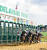 Persie winning at Delaware Park on 9/8/16
