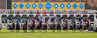 July 19, 2014: The start of the San Clemente Stakes at Del Mar Race Track in Del Mar CA. Alex Evers/ESW/CSM