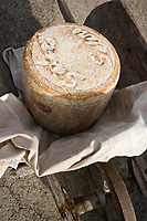 Europe/France/Auvergne/15/Cantal/Pailherols:  Fourme de Fromage Cantal Salers AOC