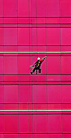 A window washer rappels down to clean pink windows on the Arlington condo building in Charlotte, NC.