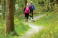 Walkers on the West Highland Way, Sallochy Woods, Loch Lomond and the Trossachs National Park