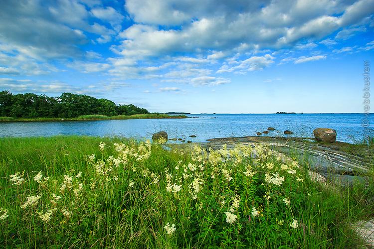 Östra Lagnö naturreservat i Stockholms skärgård/ Stockholm archipelago Sweden