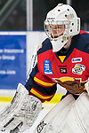 November 2nd, 2018 Vernon Vipers vs. Coquitlam Express
