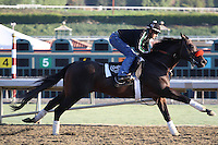 Richard's Kid for trainer Doug O'Neill at Santa Anita Park in Arcadia California