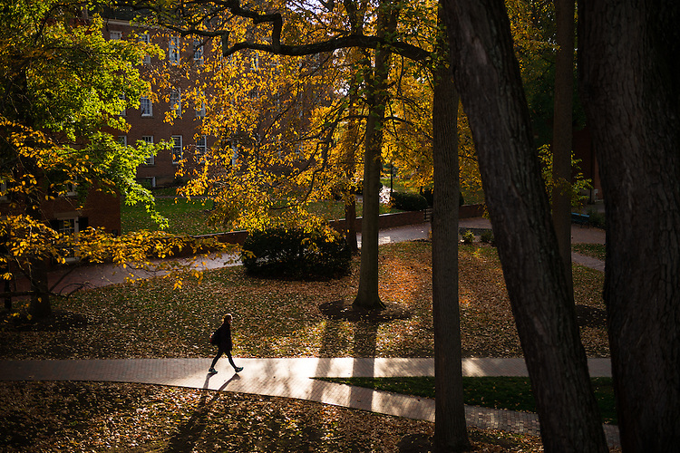 Sage Foote walks across Ohio University's College Green as the leaves change colors on October 31, 2016