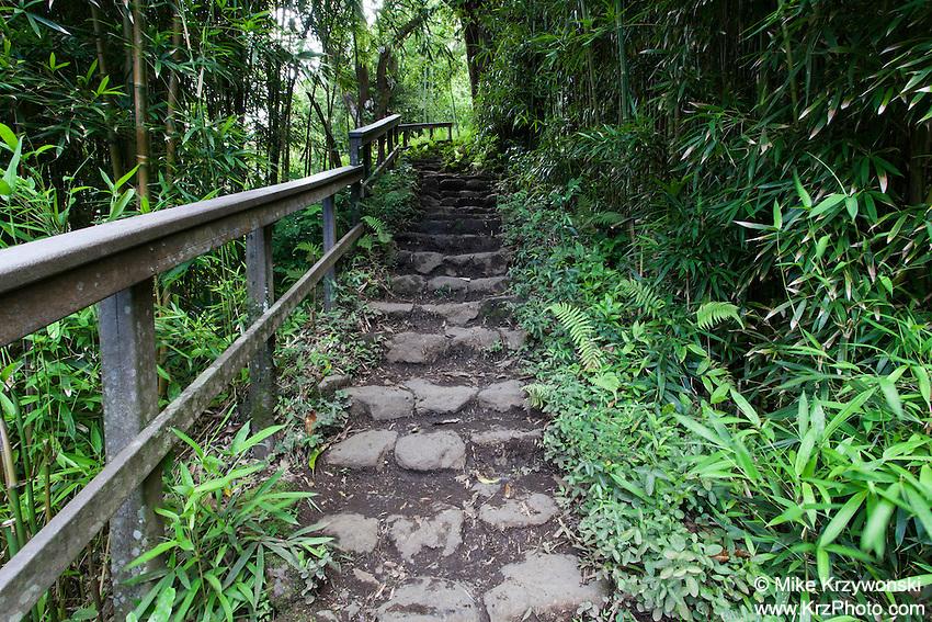 Pipiwai hiking trail, Haleakala National Park, Kipahulu, Maui