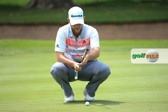 Bradley Neil (SC0) putting for birdie on the 3rd on the West Course during Round 2 of the 2016 Joburg Open Celebrating 10 years, played at the Royal Johannesburg and Kensington Golf Club, Gauteng, Johannesburg, South Africa.  15/01/2016. Picture: Golffile | David Lloyd<br /> <br /> All photos usage must carry mandatory copyright credit (&copy; Golffile | David Lloyd)