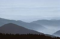 Europe/France/Alsace/68/Haut-Rhin: Les Vosges depuis le Markstein (1280 mètres)