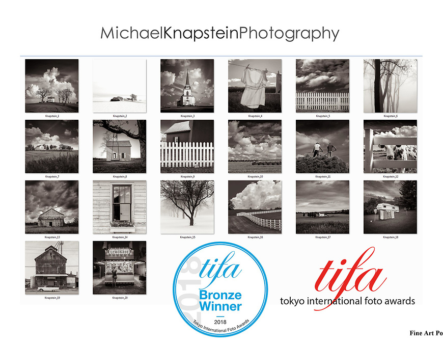"""A portfolio of 20 images by Michael Knapstein won Bronze for Fine Art Portfolio in the Tokyo International Foto Awards. The portfolio was also named a """"Country Pick"""" winner as one of the best entries from the United States."""