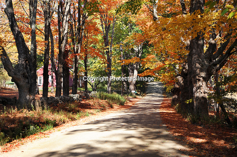 Homestead on Country Road during Colorful Fall Foliage Season in Rural New Hampshire USA